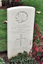 """In loving memory of a dear son and brother who gave his life for freedom - Sapper tarlington's headstone in Beny-sur-Mer Cemetery"